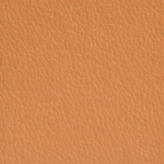 AsukaBook NeoClassic Book camel faux leather cover product shot graphic image