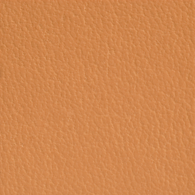 AsukaBook Photo Book Faux Leather Color - Camel