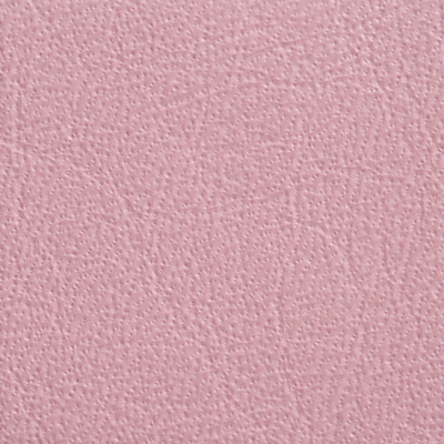 AsukaBook Photo Book Leather colour - Pink